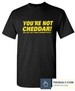 You're Not Cheddar Stylish T Shirt